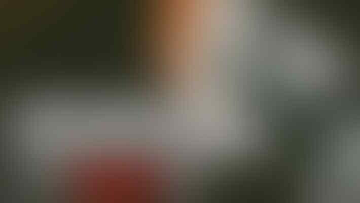 Wajib Jujur, Walau Nasi Udah Jadi Bubur #ITUSUKSESKU