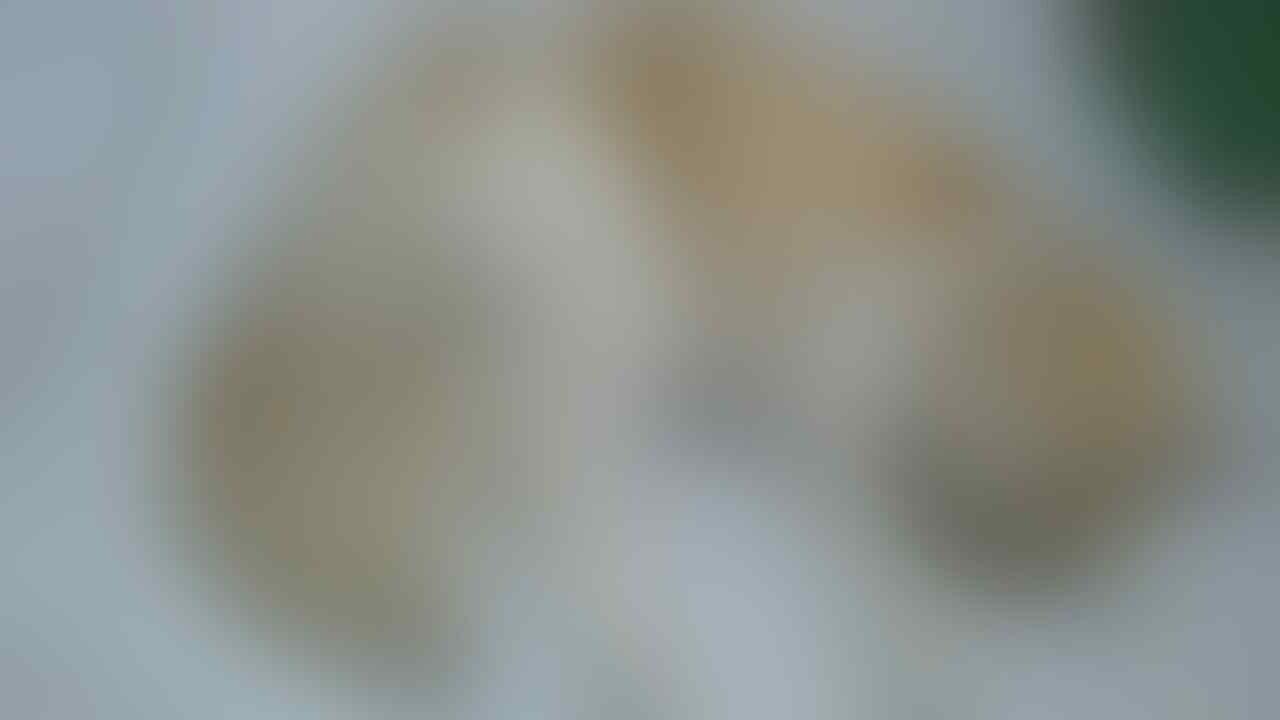 [ASK] Kucing jenis apa ya Gan?