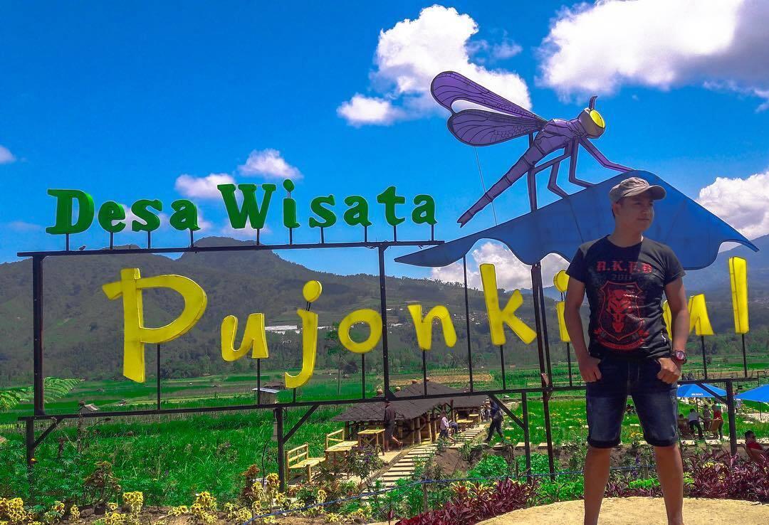 Cafe Sawah Pujon Kidul Batu Malang Kaskus