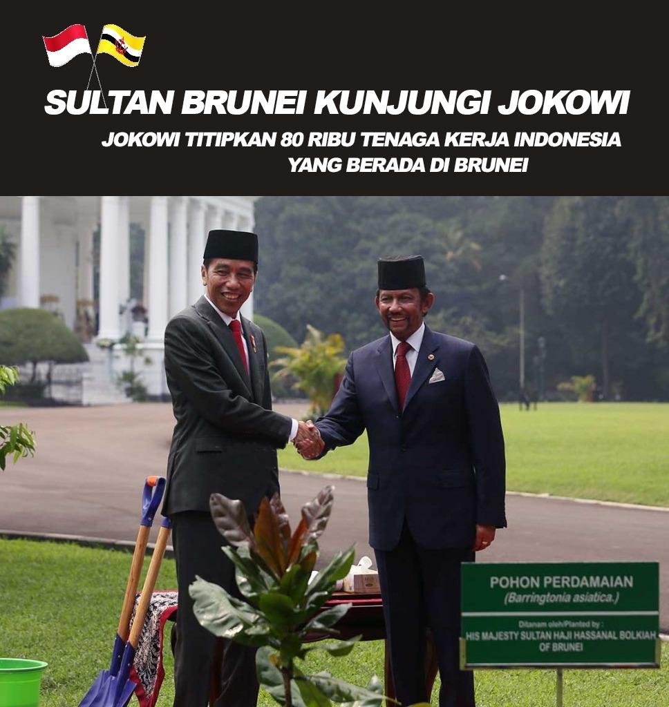 Sultan Brunei Kunjungi Jokowi
